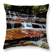Subway Falls Throw Pillow by Chad Dutson