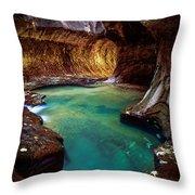 Subway Sanctum Throw Pillow by Inge Johnsson
