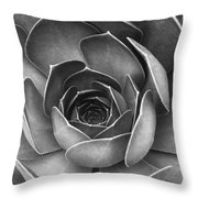 Succulent In Black And White Throw Pillow by Ben and Raisa Gertsberg