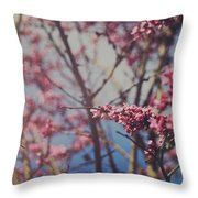 Sugar Throw Pillow by Laurie Search