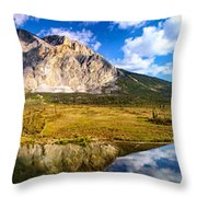 Sukakpak Reflection Throw Pillow by Chad Dutson