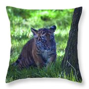 Sumatran Tiger Cub Throw Pillow by Garry Gay