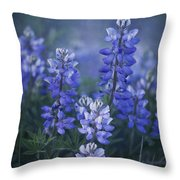 summer dream Throw Pillow by Priska Wettstein