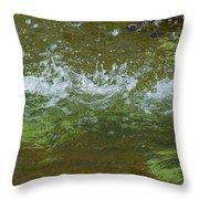 Summer Freshness - Featured 3 Throw Pillow by Alexander Senin