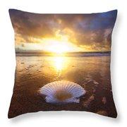 Summer Solstice Throw Pillow by Sean Davey