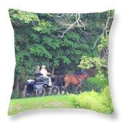 Summer Stroll Throw Pillow by Elizabeth Dow