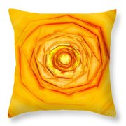 Summer Sun Throw Pillow by Methune Hively
