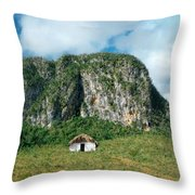 Summertime On The Prairie.. Throw Pillow by A Rey