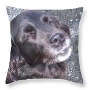 Sun in my eyes Throw Pillow by Hilde Widerberg