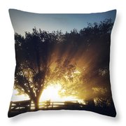 Sun Rays Throw Pillow by Les Cunliffe