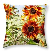Sunflower Cluster Throw Pillow by Kerri Mortenson