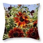 Sunflower Layers Throw Pillow by Kerri Mortenson