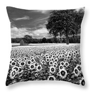 Sunflowers In Black And White Throw Pillow by Debra and Dave Vanderlaan