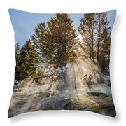 Sunlight Through The Trees Throw Pillow by Sue Smith