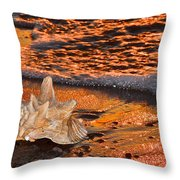 Sunlights Glow Throw Pillow by Frozen in Time Fine Art Photography