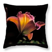 Sunlit Lily Throw Pillow by Rona Black