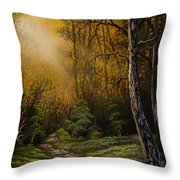Sunlit Trail Throw Pillow by C Steele