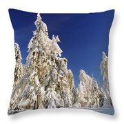 Sunny Winter Day Throw Pillow by Aged Pixel