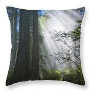 Sunrays Throw Pillow by Inga Spence