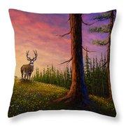 Sunrise Buck Throw Pillow by C Steele