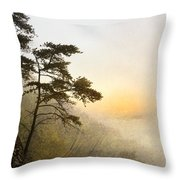 Sunrise In The Mist - D004200a-a Throw Pillow by Daniel Dempster