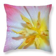 Sunrise Tulip Throw Pillow by Felicia Tica