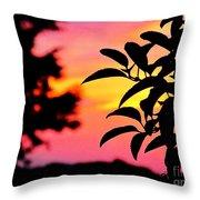 Sunset 365 61 Throw Pillow by Tina M Wenger