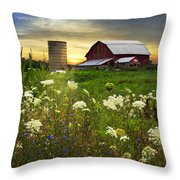 Sunset Lace Pastures Throw Pillow by Debra and Dave Vanderlaan