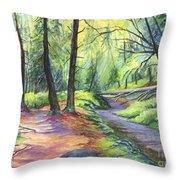 Sunset Stroll  Throw Pillow by Carol Wisniewski