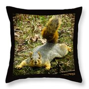 Surprise Mister Squirrel Throw Pillow by Shawna Rowe