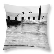Surprised Seagulls Throw Pillow by Anne Gilbert