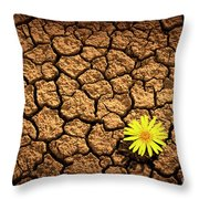 Survivor Throw Pillow by Carlos Caetano