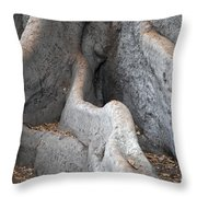 Survivor2 Throw Pillow by Amanda Barcon