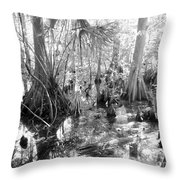 Swampland Throw Pillow by Carey Chen