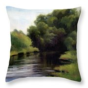 Swan Creek Throw Pillow by Janet King