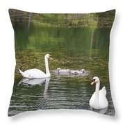 Swan Family Squared Throw Pillow by Teresa Mucha