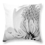 Sweet Magnolia Throw Pillow by Sabrina L Ryan