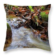 Swept Away Throw Pillow by Sharon  Talson