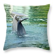 Tails Throw Pillow by Cheryl Young
