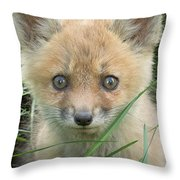 Take Me Home Throw Pillow by Everet Regal