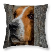 Taking A Look Around Throw Pillow by Ernie Echols