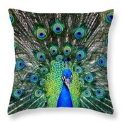 TALK of the WALK Throw Pillow by KAREN WILES