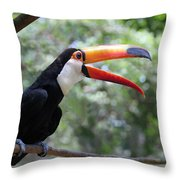 Talkative Toucan Throw Pillow by Ginny Barklow