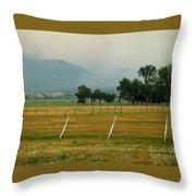 Taos Fields Throw Pillow by Steven Ralser