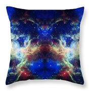 Tarantula Reflection 1 Throw Pillow by The  Vault - Jennifer Rondinelli Reilly