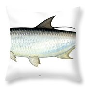 Tarpon Throw Pillow by Charles Harden