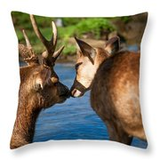 Tender Kiss. Deer In The Pamplemousse Botanical Garden. Mauritius Throw Pillow by Jenny Rainbow