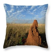 Termite Mound In Cerrado Grassland Emas Throw Pillow by Tui De Roy
