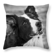 Tessie 9 Throw Pillow by Rich Franco