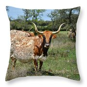 Texas Longhorns Throw Pillow by Christine Till